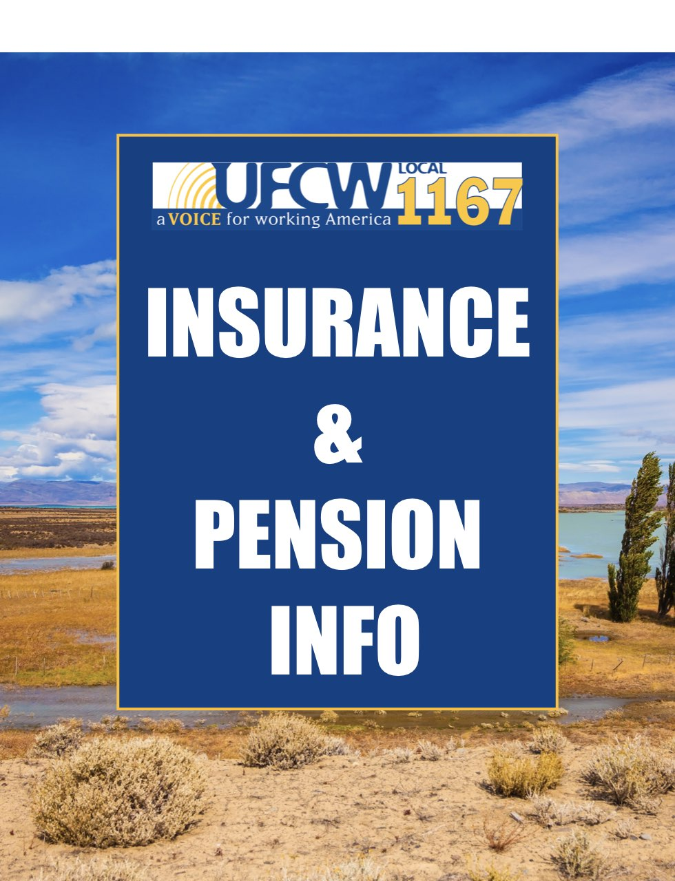 Insurance/Pension Information